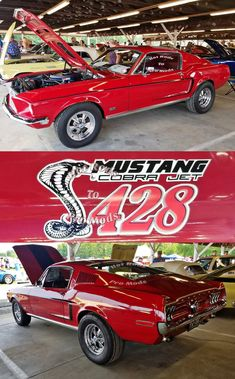 Classic Car News – Classic Car News Pics And Videos From Around The World Mustang Cobra, Ford Mustang Fastback, Ford Mustangs, Custom Muscle Cars, Best Muscle Cars, American Muscle Cars, Ford Lincoln Mercury, Classic Mustang, Ford Classic Cars