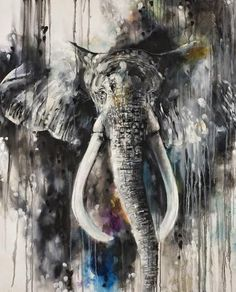 Katy Jade Dobson is a UK based oil painter from Yorkshire. Katy Jade Dobson uses a number of mediums to paint her amazing pieces. Creative Pictures, Art Pictures, Natural Form Artists, Elephant Art, Animal Paintings, Elephant Paintings, Wildlife Art, Framed Art Prints, New Art