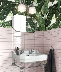 9 Favoriten Zimmer Mit Einem Hauch Von Tropen Wallpaper Edition