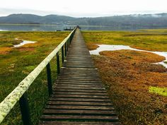 Knysna Lagoon by Lex Faure / Knysna, Victoria, The Province, Cape Town, Railroad Tracks, South Africa, Paths, Explore, African Proverb