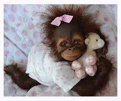 Resultado de imagen para imagenes de monos con frases