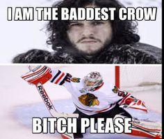 Hawks meme crow