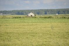 Fields of Ostrobothnia