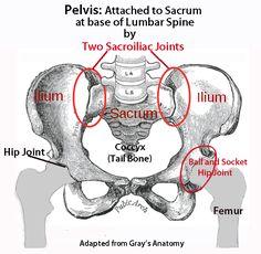 portal sex prostata massage heilbronn