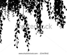 Google Image Result for http://image.shutterstock.com/display_pic_with_logo/66175/66175,1232233579,3/stock-vector-willow-branch-falling-down-vector-illustration-23447842.jpg