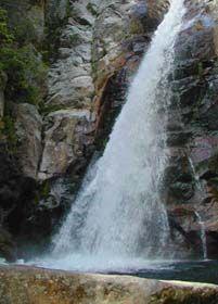 Glen Ellis Falls, Ten Things to Do in NH White Mountain Region