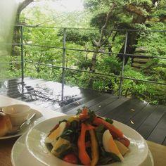 根津美術館の奥には大きな庭園とカフェがあ