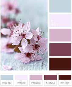 Бесплатные уроки по фотографии.: Цветовая гармония