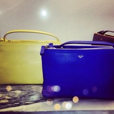 Celine Trio - Cobalt and Yellow - real struggle