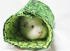 Nice tunnel or bed for a guinea pig. Looks easy to make too. Diy!