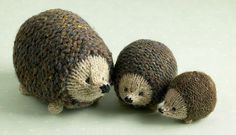 family of hedgehogs knit from same pattern with different gauge yarn. pattern: http://www.ravelry.com/patterns/library/little-oddment-hedgehog