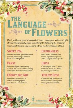 Dont just buy a generic bouquet of rosesmake your Valentines gift of fr is part of Flower meanings - Victorian Flowers, Vintage Flowers, Modern Victorian, Vintage Floral, Fresh Flowers, Beautiful Flowers, Elegant Flowers, Flower Meanings, Color Meanings