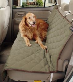 Solvit 62283 Deluxe Bench Seat Cover for Pets: http://www.amazon.com/Solvit-62283-Deluxe-Bench-Cover/dp/B000GL8HNA/?tag=httpbetteraff-20