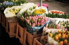 buying fresh flowers on the way home