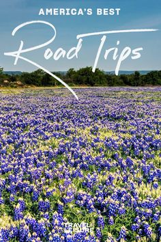 Fall, Spring, and Summer are perfect seasons for road trips - Driving by car around America is becoming more popular and great for spring break, honeymoons, or just a weekend getaway. Click to see America's Best Roadtrips to take on your next vacation. #Vacation #Travel #RoadTrip #Ideas #Inspiration #WheretoTravel | Travel + Leisure - America's Best Road Trips