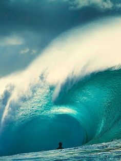 Perfect Wave Your wisdom shows through what you do. Be that light that shines whilst you build an inspired life of countless blessings and so much abundance. The choice is always yours. ~Gigi Galluzzo