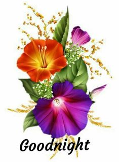 Hawaiian Flower Tattoos, Hawaiian Flowers, Window Glass Design, Flower Art Drawing, Good Night Friends, Illustration Blume, Laser Art, Good Night Image, Alcohol Ink Art