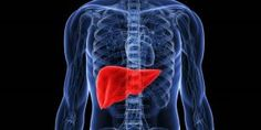 The liver is one of the most crucial detoxifying organs in the body. Learn how to detox the liver using stimulating essential oils to support toxin release. Clean Your Liver, Detox Your Liver, Liver Cleanse, Liver Detoxification, Migraine, Essential Oil For Liver, Essential Oils For Lupus, Liver Detox Symptoms, Sistema Gastrointestinal