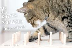 """aentschies Blog: DIY - Katzenspielzeug """"Fummelbrett"""""""