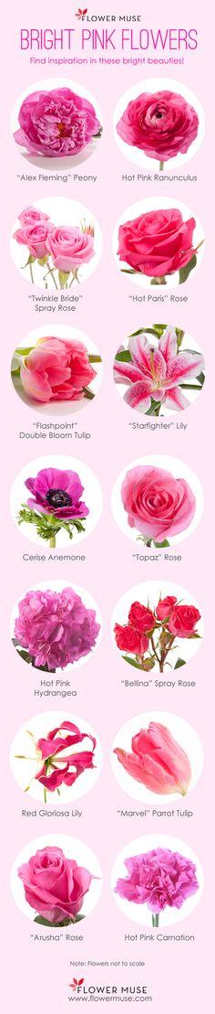 Variedades de flores de color rosa fuerte para decoración de bodas. #DecoracionBodas