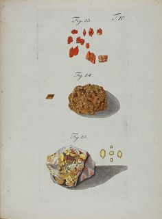 Wulfen, Franz Xavier (1791) Mineral Chart, Sketch Journal, Science Illustration, Mineralogy, Gems And Minerals, Hand Coloring, Fossils, Vintage Prints, Geology