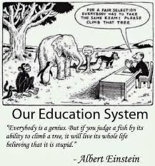 """asking animals to climb tree cartoon - Google Search But if you judge a fish by its ability to climb a tree, it will live its whole life believing that it is stupid."""" -Albert Einstein"""