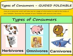 ECOLOGY: PRODUCERS AND TYPES OF CONSUMERS - TeachersPayTeachers.com - FREE teaching resource