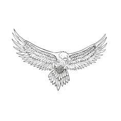 Chest Tattoo Script, Eagle Chest Tattoo, Cool Chest Tattoos, Chest Tattoos For Women, Chest Piece Tattoos, Eagle Tattoos, Black Tattoos, Knee Tattoo, Forearm Tattoo Men