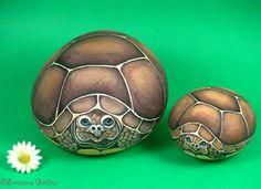 turtle rockpainting