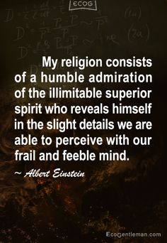 My religion consists of a humble admiration of the illimitable superior spirit who reveals himself in the slight details we are able to perceive with our frail and feeble mind - 15 Famous Quotes by Albert Einstein - EcoGentleman.com