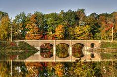 Fall Foliage 8 - Akron State Park - Akron, NY © 2014 Deborah Ritch Photography www.deborahritchphotography.com