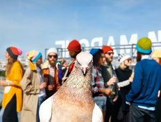 Pigeons bring Yankee cool to Paris at the Brooklyn Mania exhibit at the Bon Marché department store, FREE entry though 17 October. Martin Parr, Color Photography, Film Photography, Street Photography, Documentary Photographers, Famous Photographers, Brooklyn, William Eggleston, Magnum Photos