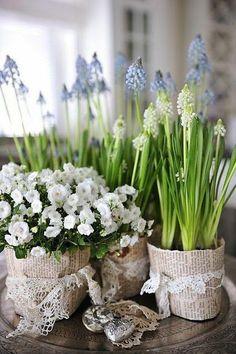 Tinker Spring Decor – 33 Beautiful DIY Garden Ideas for You – Flowers Flowers Fresh Flowers, Spring Flowers, Beautiful Flowers, Spring Blooms, Easter Flowers, Nice Flower, Spring Bouquet, Flower Ideas, Wild Flowers