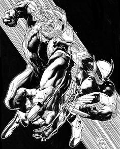 Wolverine vs Sabretooth commission by Ryan Stegman #wolverine #sabretooth #xmen #art #comics #marvel