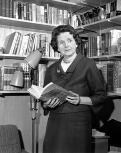 """Rachel Carson, """"the gentle storm center,"""" as <i>Life</i> magazine called her, poses in her study with <i>Silent Spring</i>."""