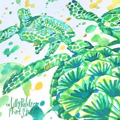 Giving Friday the green light #Lilly5x5