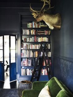 Cool room, minus the dead animal - yuck!  Colorful and unusual interior | NordicDesign