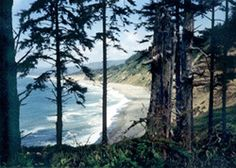 visitors to Agate Beach are often perplexed by the sight of people walking slowly with their heads bowed, intently studying the ground as though they've lost a contact lens, or of other people sitting down and methodically sifting through the beach gravel beds.