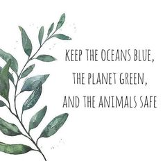 It's our responsibility to protect our planet. Together as a collective we hav. - save a planet - Save Planet Earth, Save Our Earth, Love The Earth, Save The Planet, Save Mother Earth, Mother Earth Quotes, Mother Nature, Fuerza Natural, Image Citation