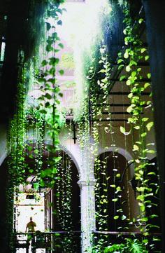 Light / Hanging vegetation from ceiling