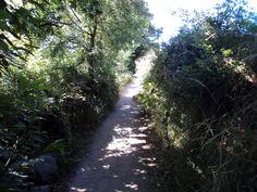 En las cercanías de Vilei - Lugo
