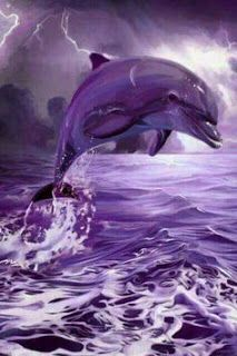 BLOG OBRAZKI: DELFINY Dolphin Images, Dolphin Photos, Dolphin Art, Ocean Wallpaper, Animal Wallpaper, Orcas, Animals And Pets, Cute Animals, Dolphins Tattoo