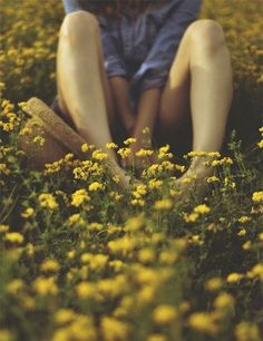 the-hippie-owl:  Nature on We Heart It. http://weheartit.com/entry/87483060