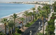 http://www.telegraph.co.uk/news/worldnews/europe/france/7906995/Moth-wipes-out-French-Rivieras-palm-trees.html