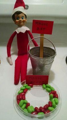 More elf pranks? Magic seeds sound fun!
