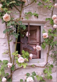 Rose Cottage Garden: roses around the window Beautiful Gardens, Beautiful Flowers, Unique Roses, Pretty Roses, Dream Garden, Home And Garden, Summer Garden, Rose House, Ivy House