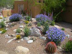 510 best Desert landscaping ideas images on Pinterest | Landscaping ...