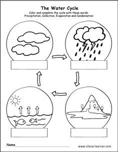 Printable water cycle worksheets for preschools | School | Water ...
