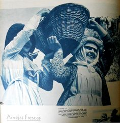 Arvejas frescas. Fuente: Revista M.A.N. Nov-Dic 1940
