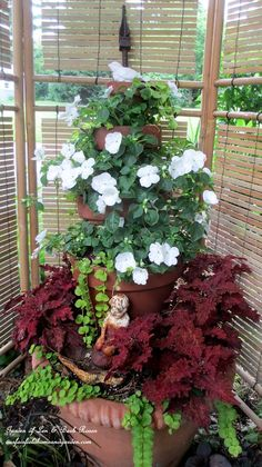 Container Gardening Ideas Container Gardening ideas for shade-impatiens coleus creeping jenny at Our Fairfield Home Quick Garden, Summer Garden, Home And Garden, Container Gardening Vegetables, Container Plants, Gemüseanbau In Kübeln, Tiered Planter, Pergola, Growing Flowers